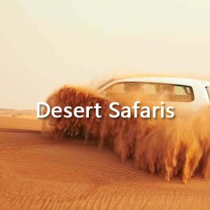 Desert Safaris & Activities